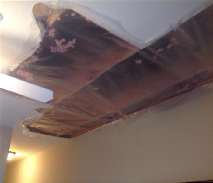 Storm Damaging to an Attic and Ceiling in Carol Stream After