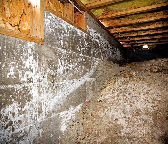 Water Damage Crawl Space Water Damage In Your Lombard Home