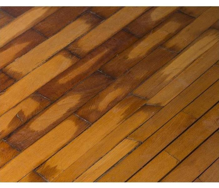 Water Damage How Professional Remediation Helps Save the Hardwood Floors in Your Glendale Heights Home From Water Damage