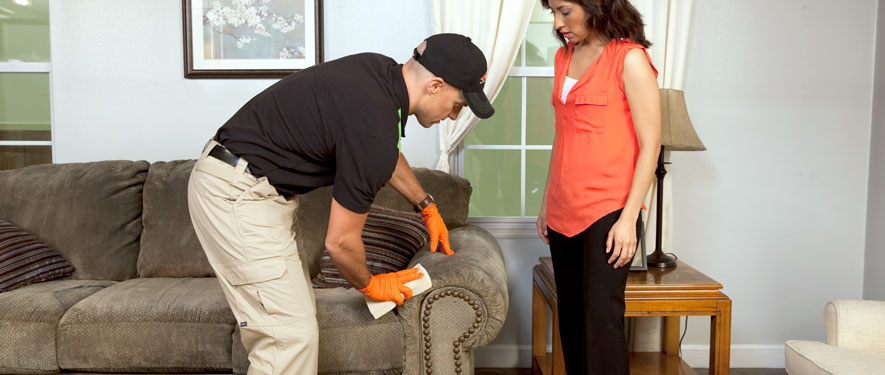 West Chicago, IL carpet upholstery cleaning